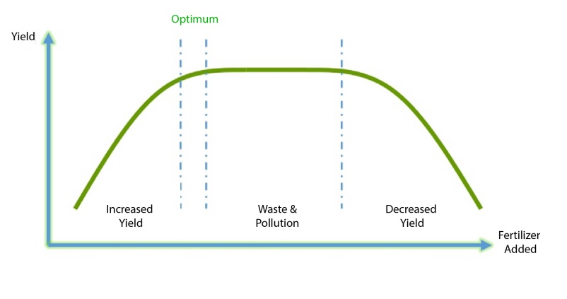 fertigation vs yield